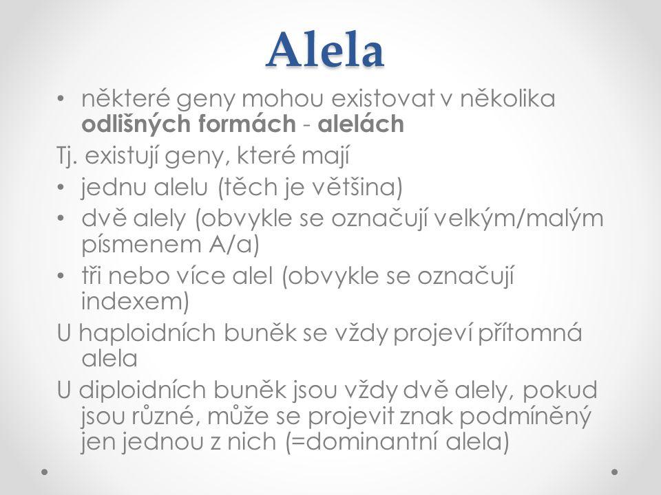 Alela některé geny mohou existovat v několika odlišných formách - alelách. Tj. existují geny, které mají.