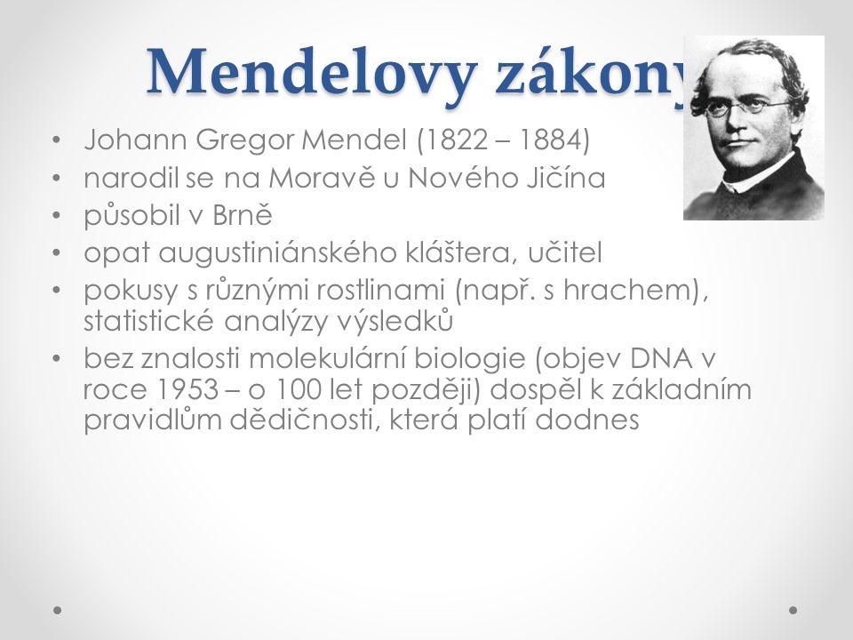 Mendelovy zákony Johann Gregor Mendel (1822 – 1884)