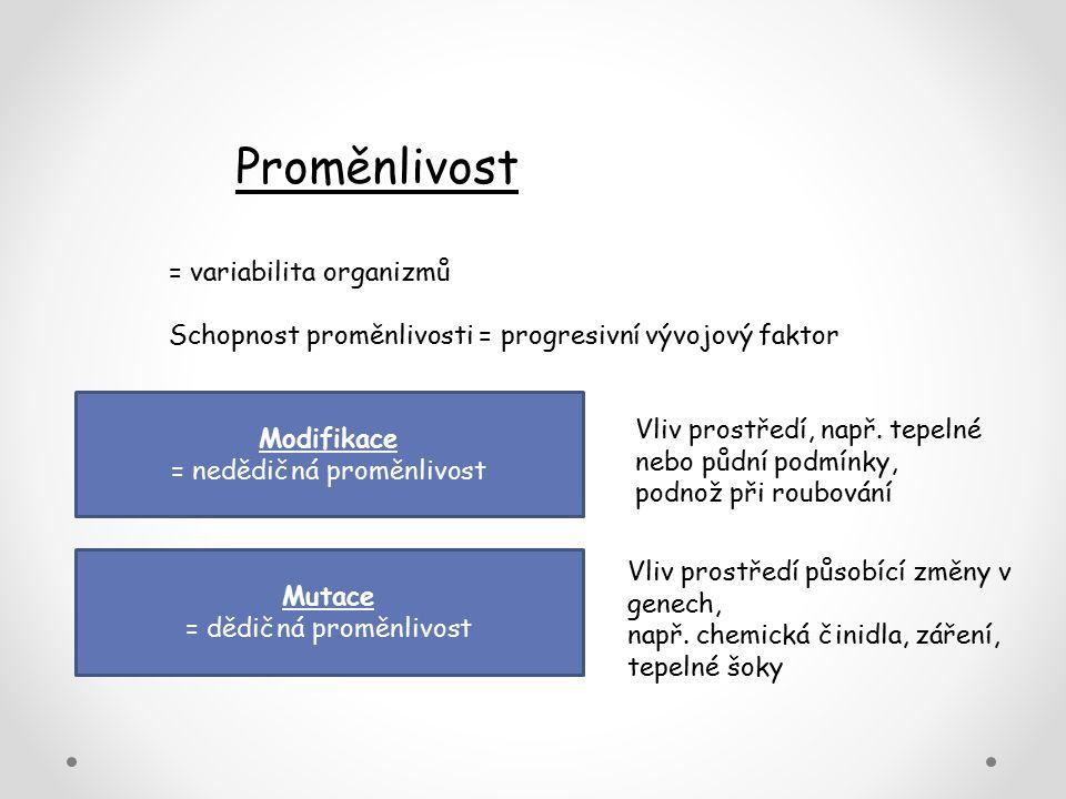 Proměnlivost = variabilita organizmů