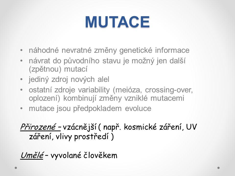 MUTACE náhodné nevratné změny genetické informace