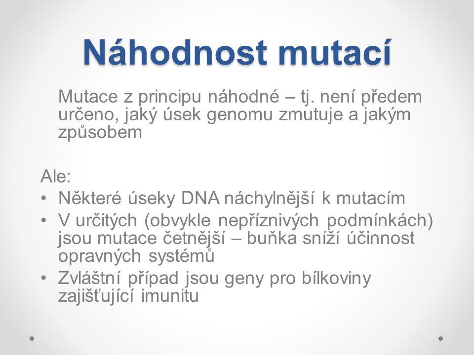 Náhodnost mutací Mutace z principu náhodné – tj. není předem určeno, jaký úsek genomu zmutuje a jakým způsobem.