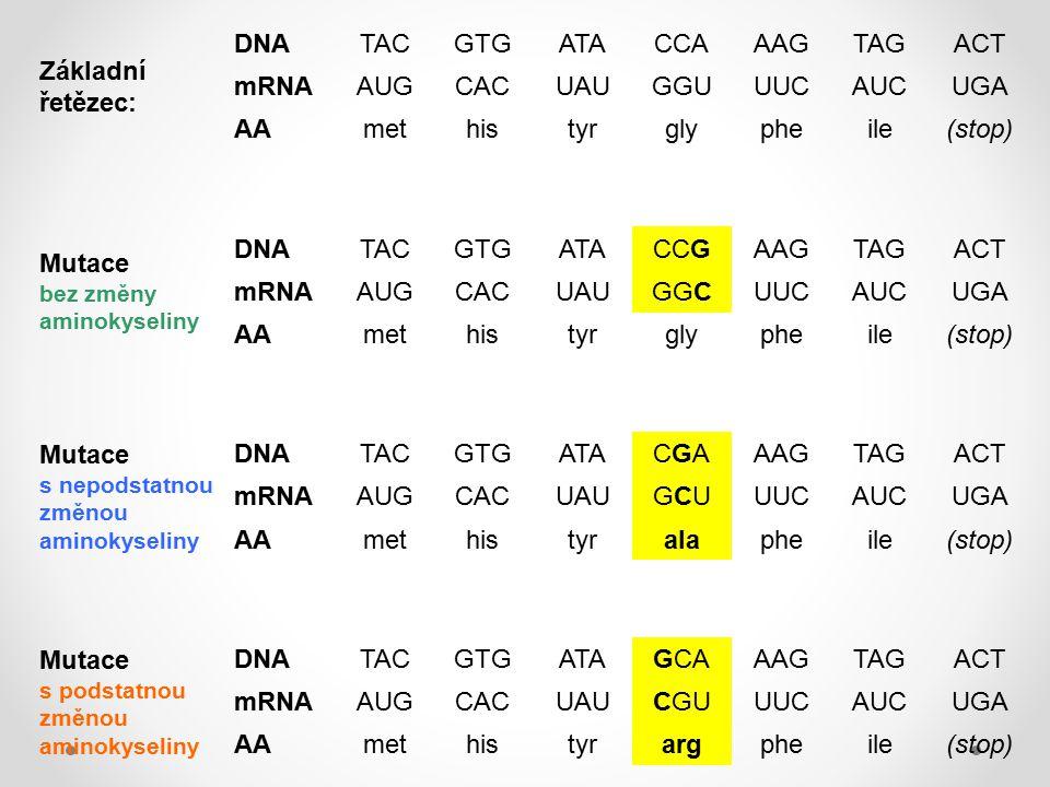 Mutace s nepodstatnou změnou aminokyseliny CGA GCU ala