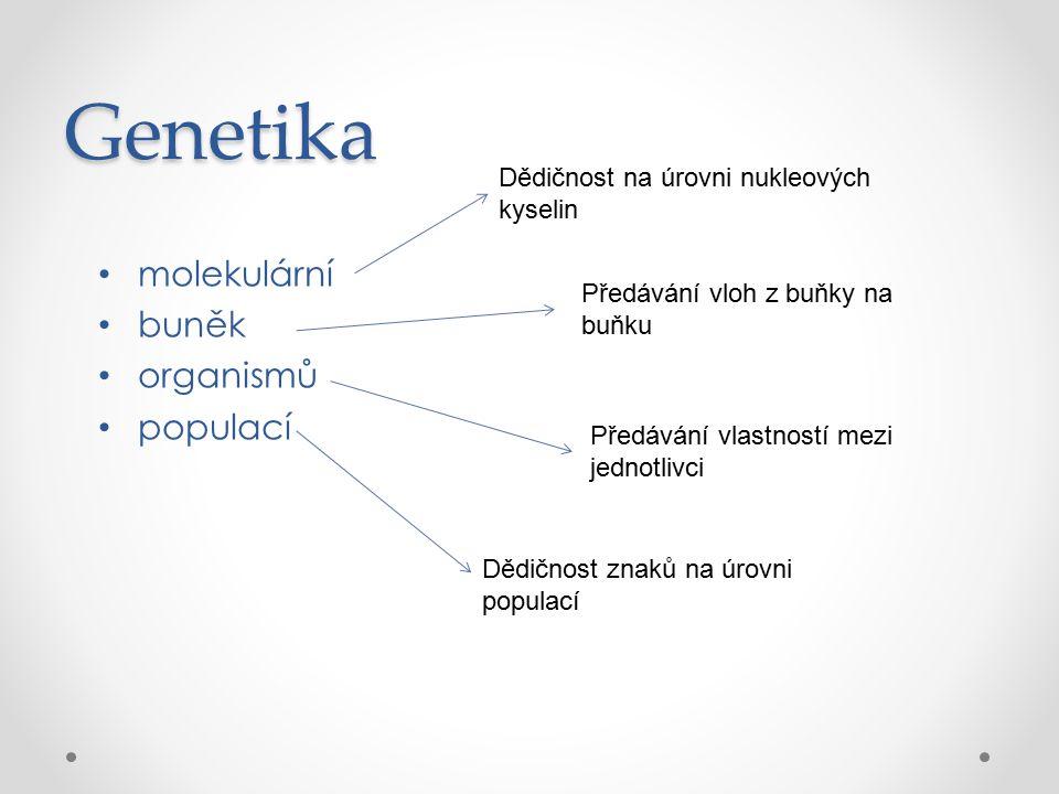 Genetika molekulární buněk organismů populací