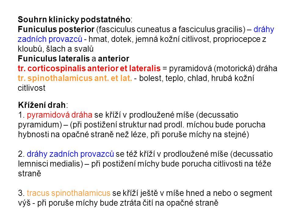Souhrn klinicky podstatného: Funiculus posterior (fasciculus cuneatus a fasciculus gracilis) – dráhy zadních provazců - hmat, dotek, jemná kožní citlivost, propriocepce z kloubů, šlach a svalů Funiculus lateralis a anterior tr. corticospinalis anterior et lateralis = pyramidová (motorická) dráha tr. spinothalamicus ant. et lat. - bolest, teplo, chlad, hrubá kožní citlivost