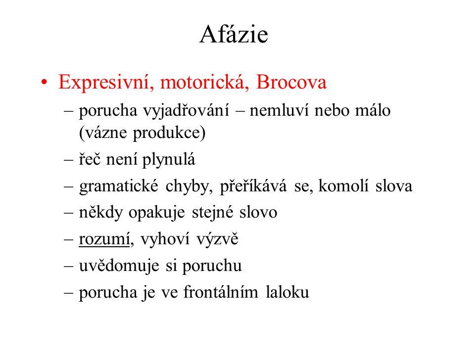 Afázie Expresivní, motorická, Brocova