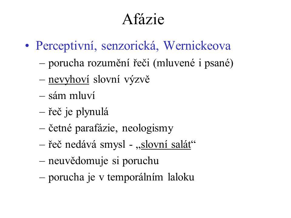 Afázie Perceptivní, senzorická, Wernickeova