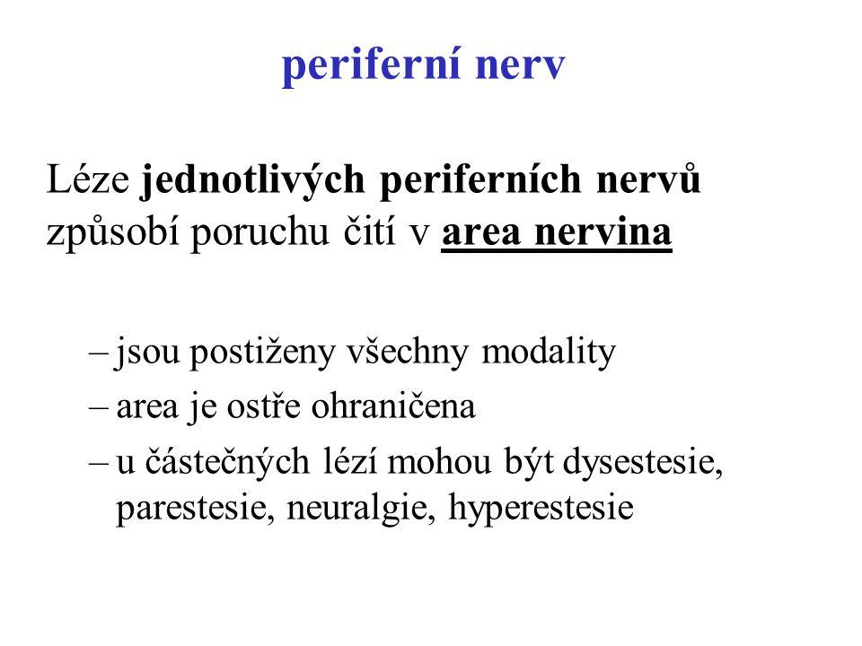 periferní nerv Léze jednotlivých periferních nervů způsobí poruchu čití v area nervina. jsou postiženy všechny modality.