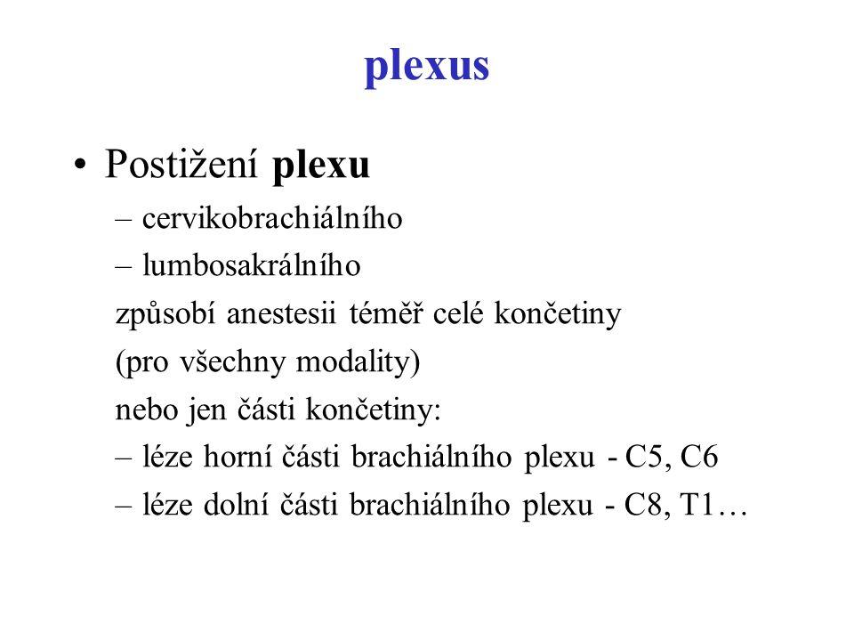 plexus Postižení plexu cervikobrachiálního lumbosakrálního