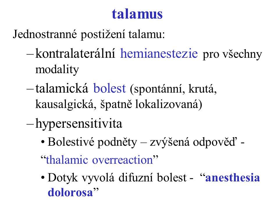 talamus kontralaterální hemianestezie pro všechny modality