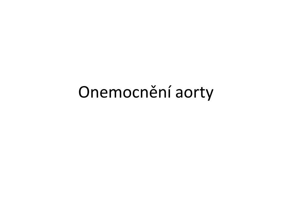 Onemocnění aorty