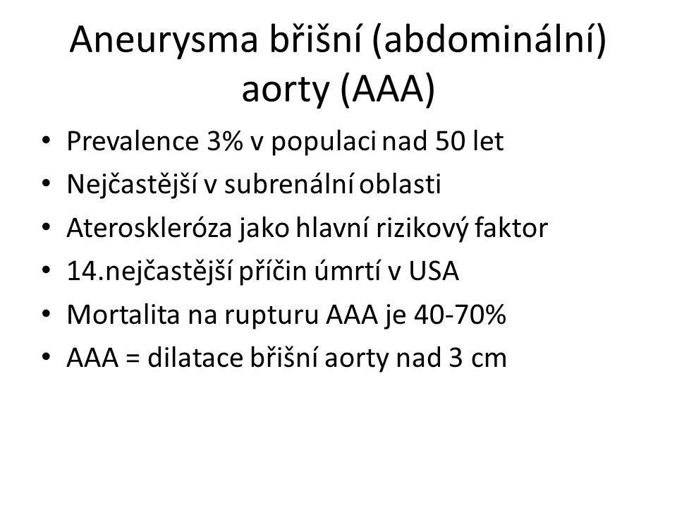 Aneurysma břišní (abdominální) aorty (AAA)