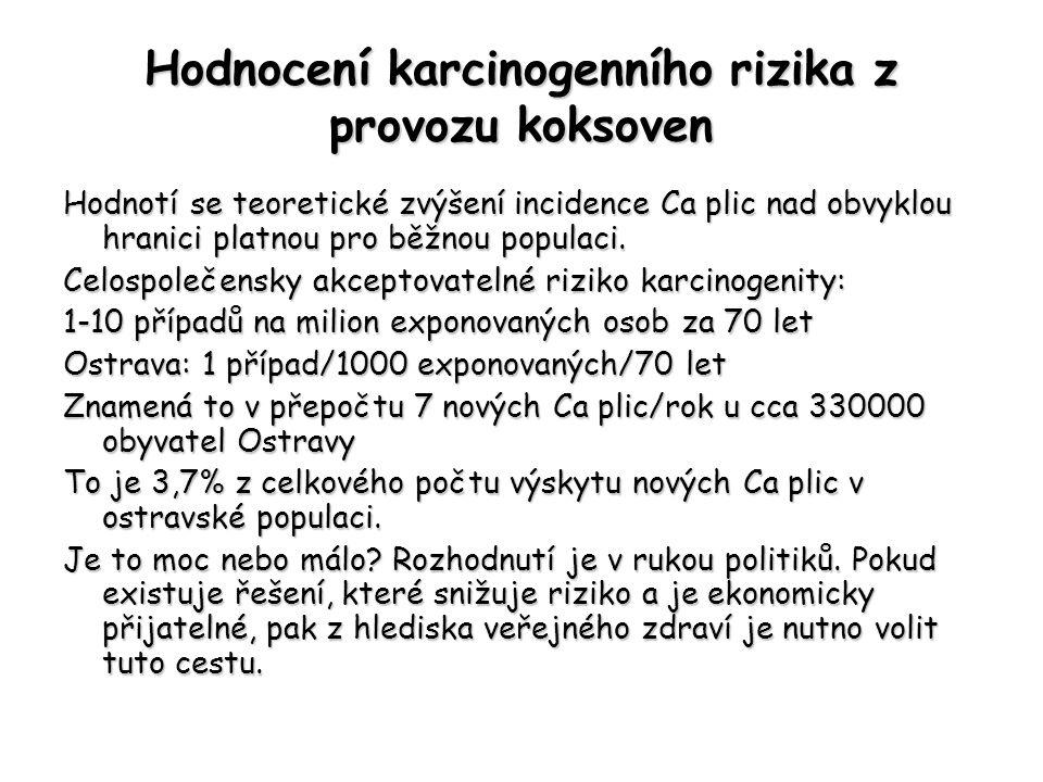 Hodnocení karcinogenního rizika z provozu koksoven