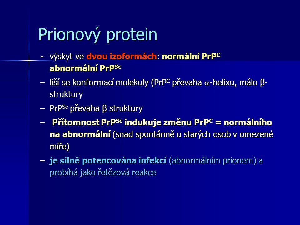 Prionový protein