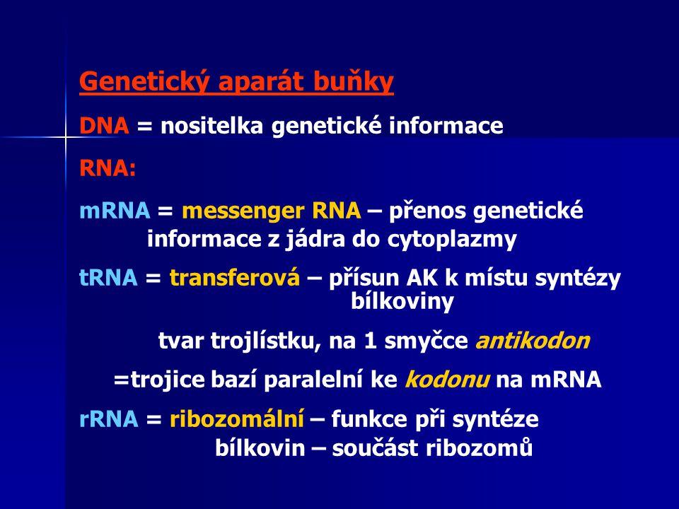 Genetický aparát buňky