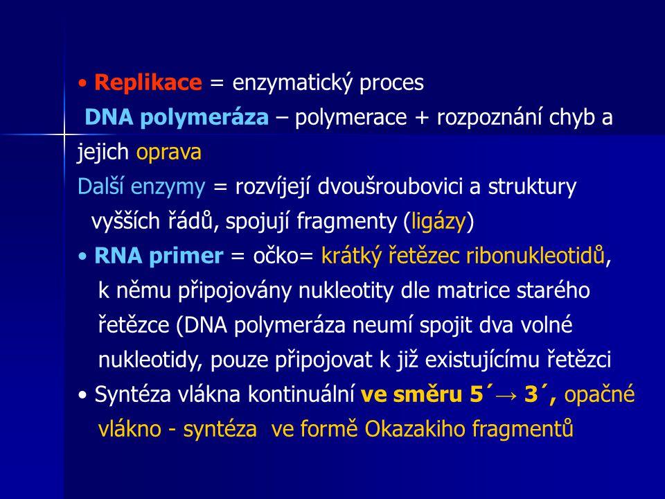 Replikace = enzymatický proces