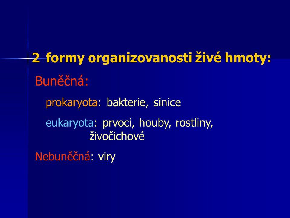 formy organizovanosti živé hmoty: