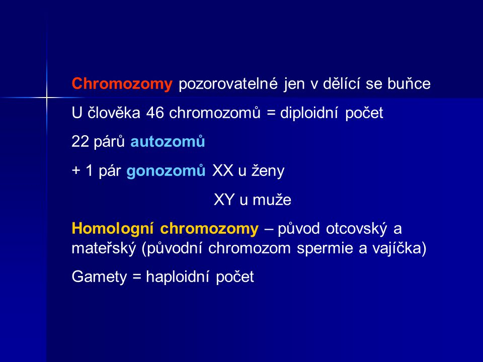 Chromozomy pozorovatelné jen v dělící se buňce