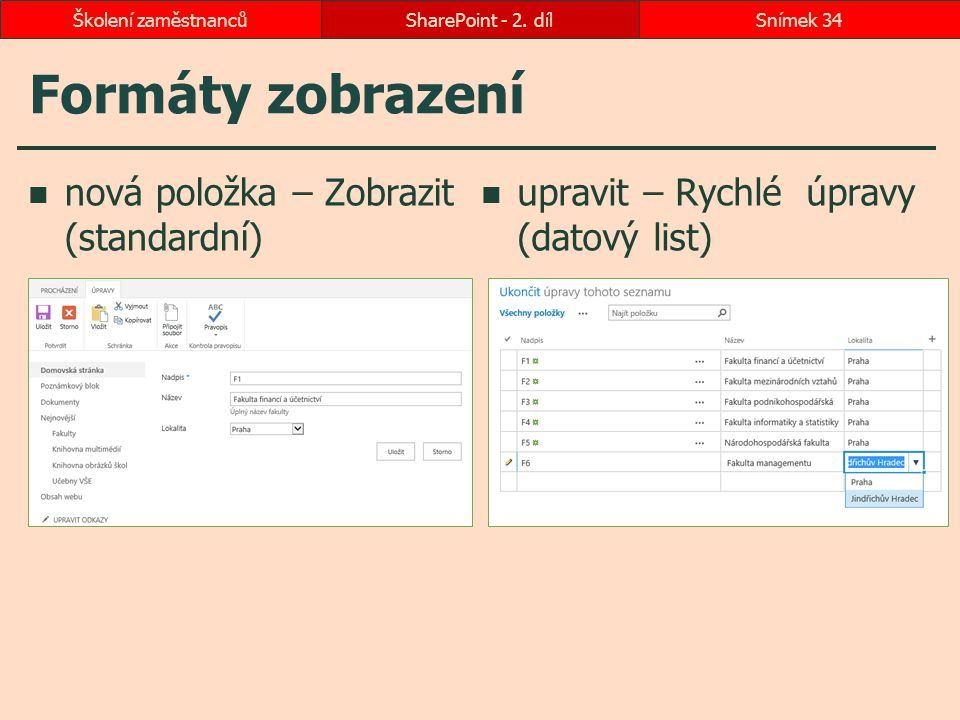 Formáty zobrazení nová položka – Zobrazit (standardní)