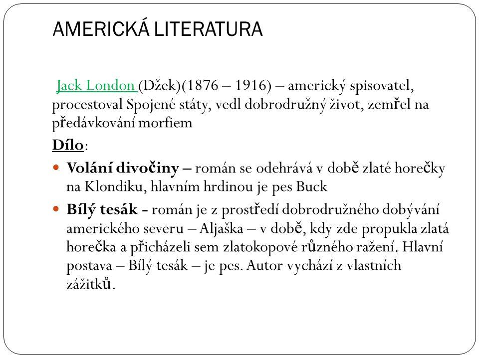 AMERICKÁ LITERATURA