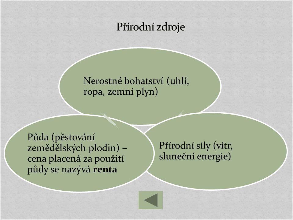 Přírodní zdroje Nerostné bohatství (uhlí, ropa, zemní plyn) Přírodní síly (vítr, sluneční energie)