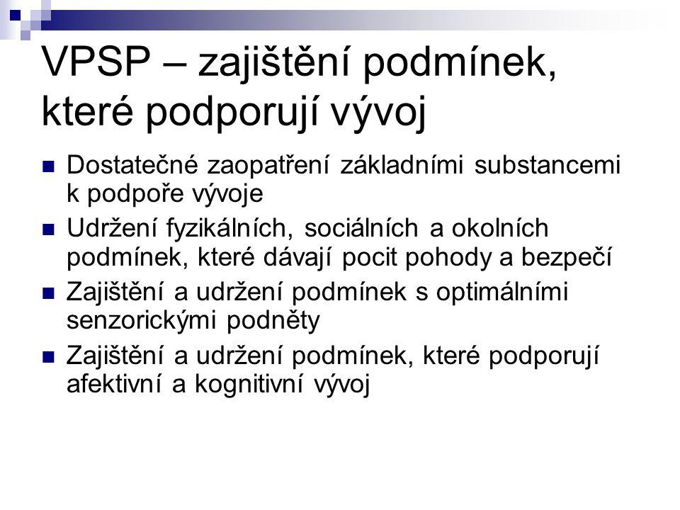 VPSP – zajištění podmínek, které podporují vývoj