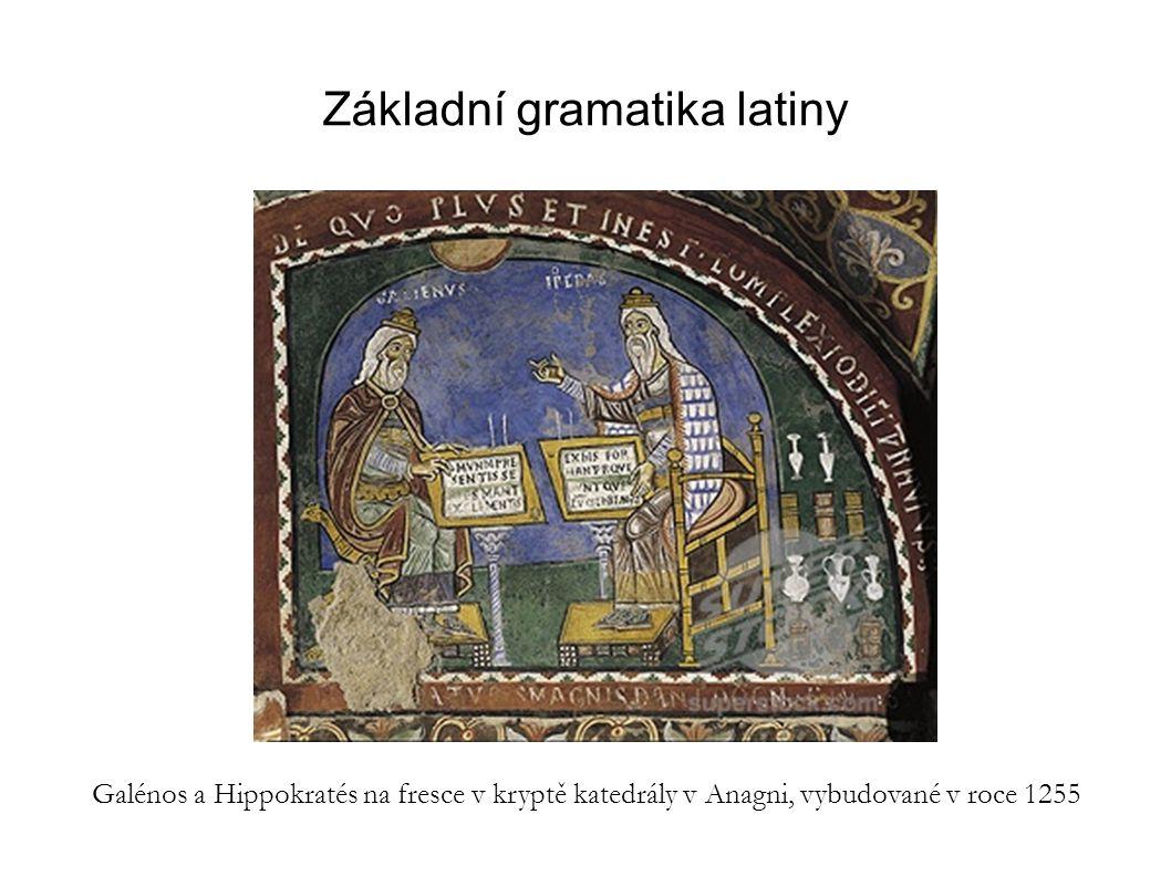 Základní gramatika latiny
