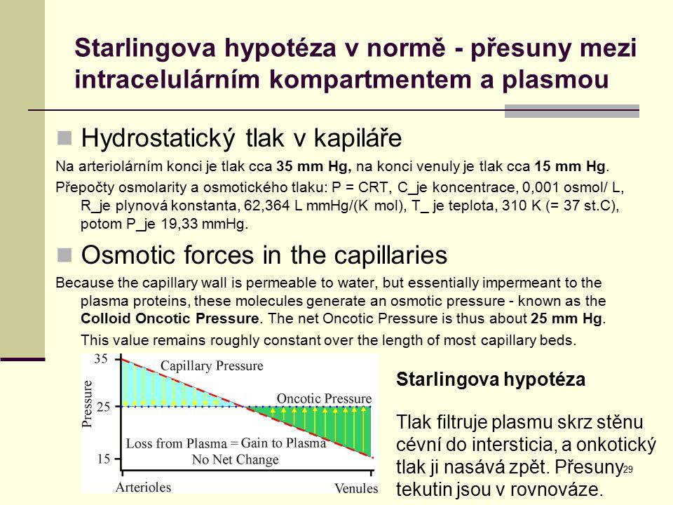 Hydrostatický tlak v kapiláře