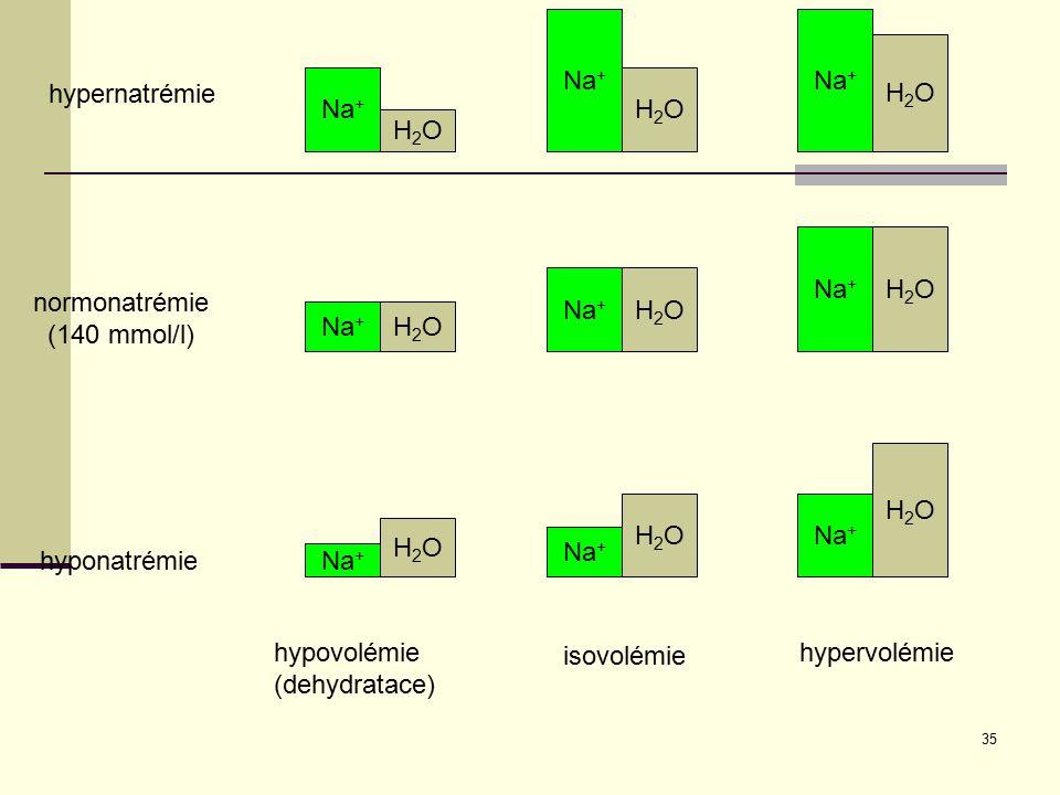 Na+ Na+ H2O hypernatrémie Na+ H2O H2O Na+ H2O Na+ H2O normonatrémie