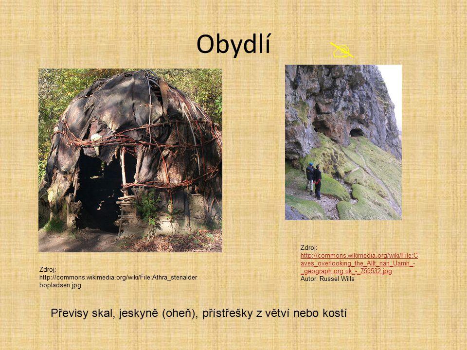 Obydlí  Převisy skal, jeskyně (oheň), přístřešky z větví nebo kostí