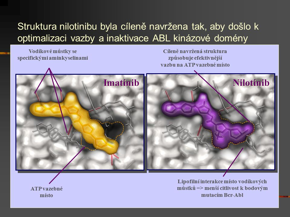 Vodíkové můstky se specifickými aminkyselinami