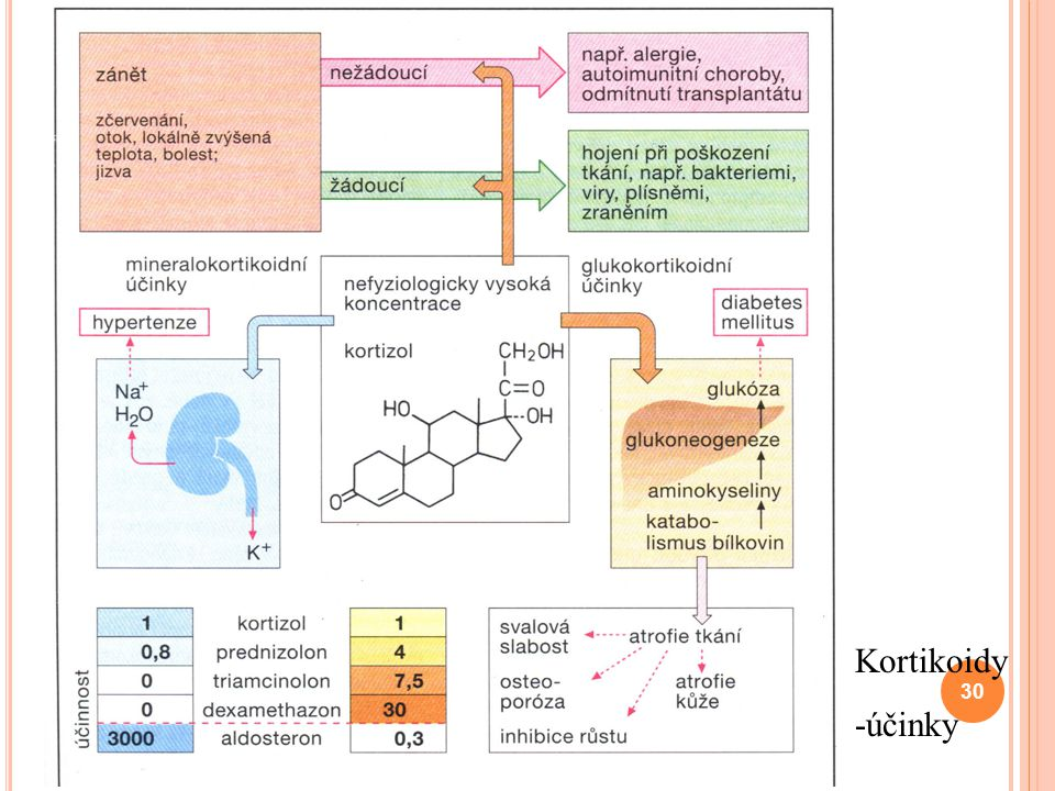 Kortikoidy -účinky