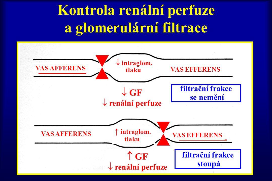Kontrola renální perfuze a glomerulární filtrace