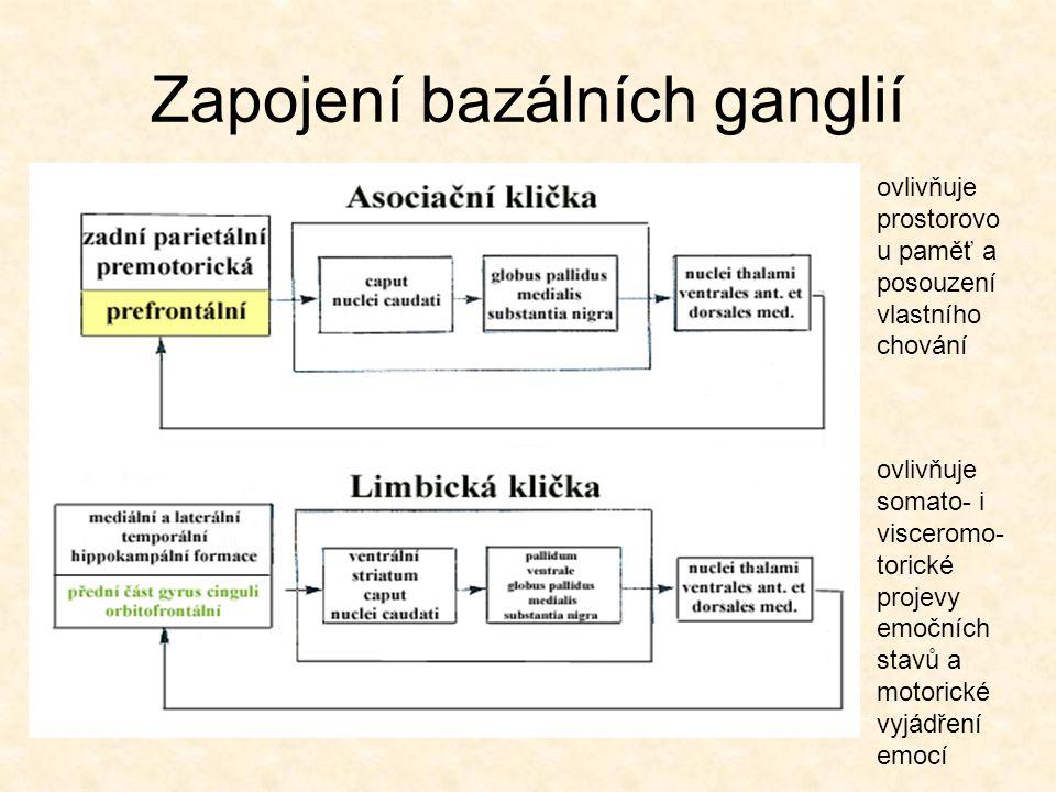Zapojení bazálních ganglií