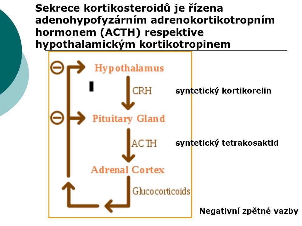 Sekrece kortikosteroidů je řízena adenohypofyzárním adrenokortikotropním hormonem (ACTH) respektive hypothalamickým kortikotropinem