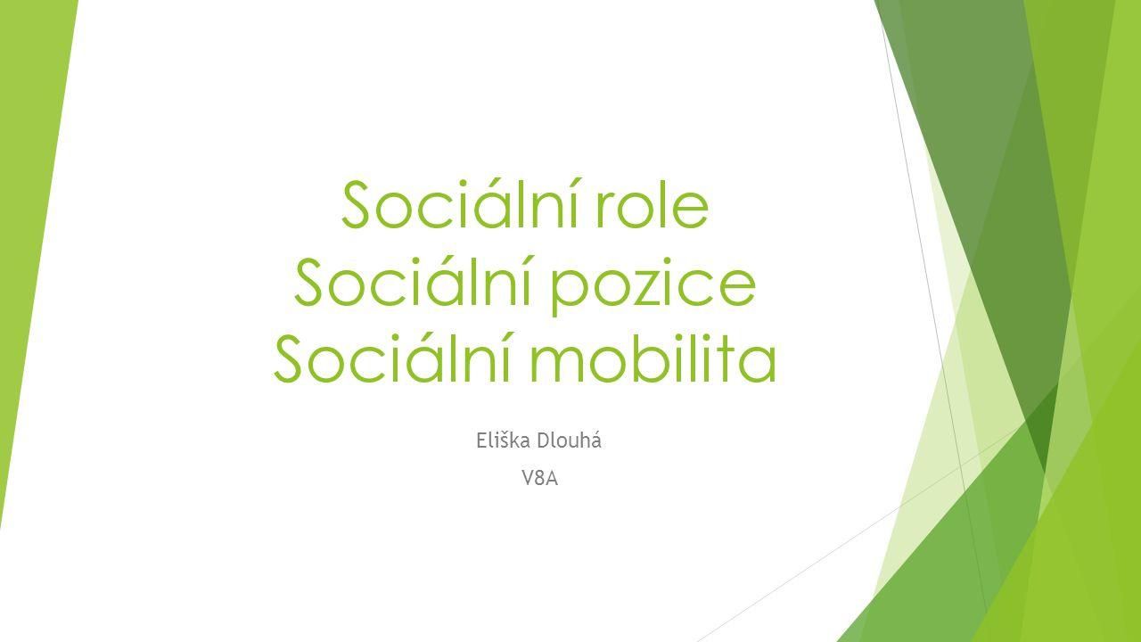 Sociální role Sociální pozice Sociální mobilita