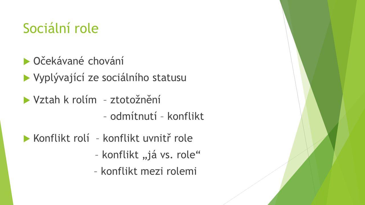Sociální role Očekávané chování Vyplývající ze sociálního statusu