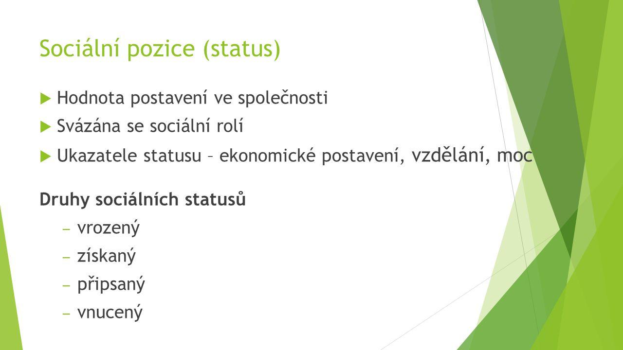 Sociální pozice (status)