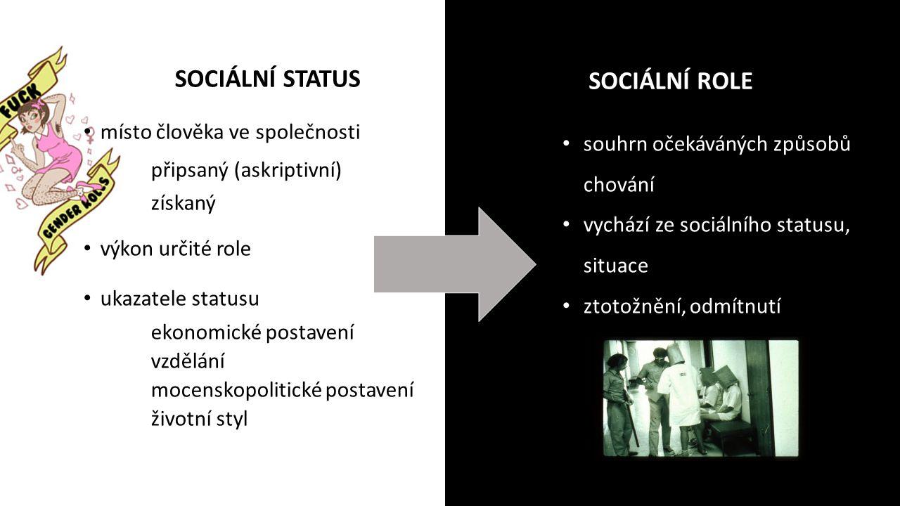 SOCIÁLNÍ STATUS SOCIÁLNÍ ROLE