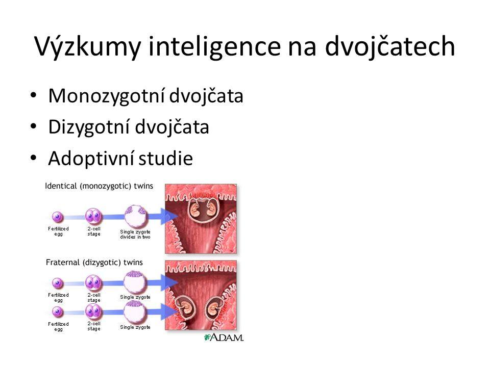 Výzkumy inteligence na dvojčatech
