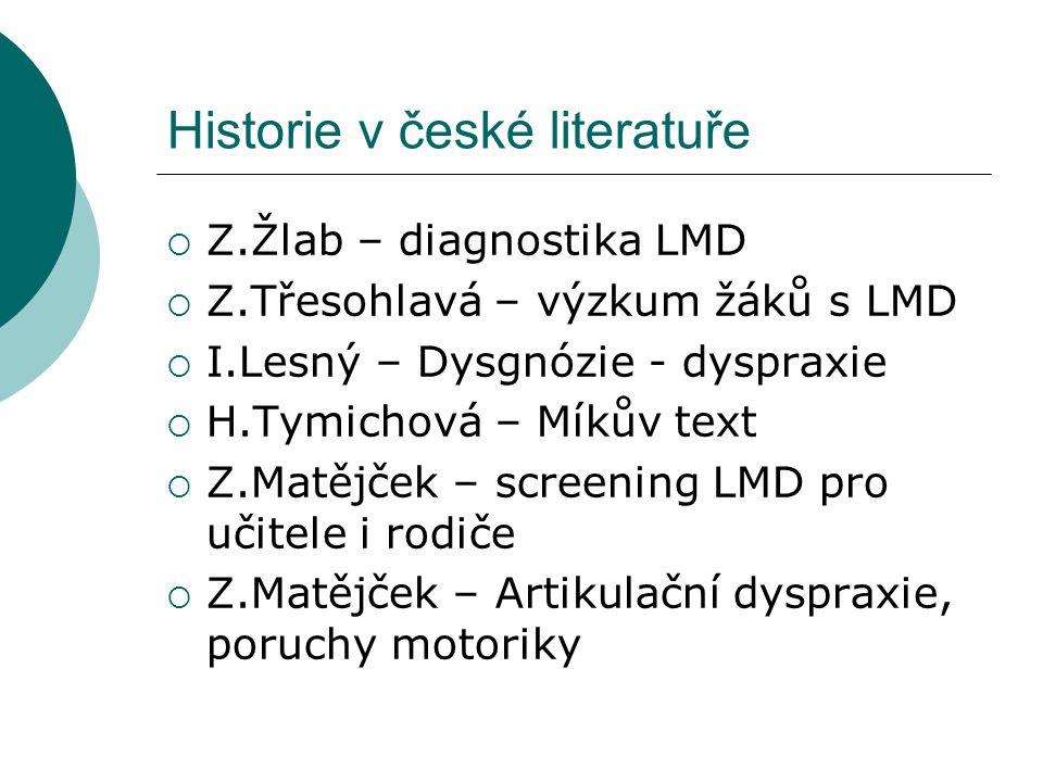 Historie v české literatuře