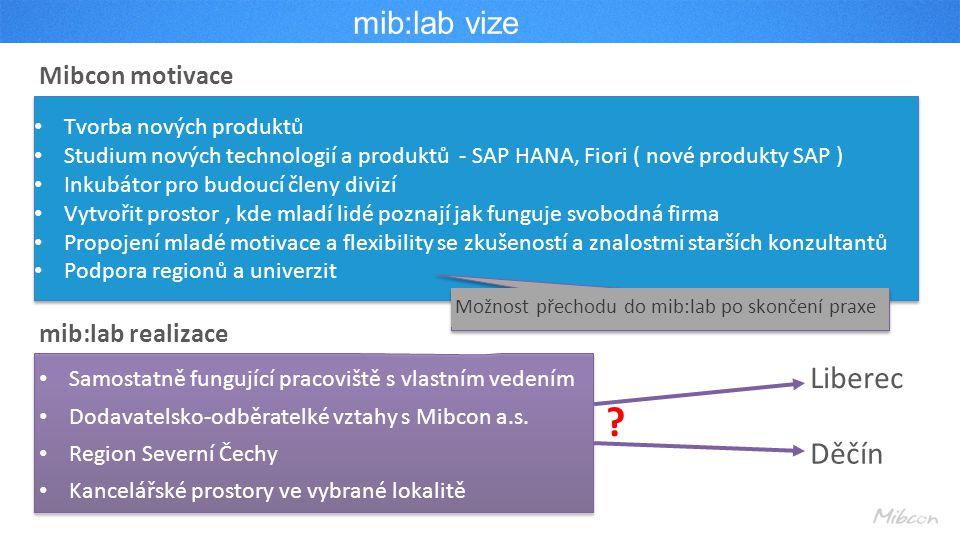 mib:lab vize Liberec Děčín Mibcon motivace mib:lab realizace