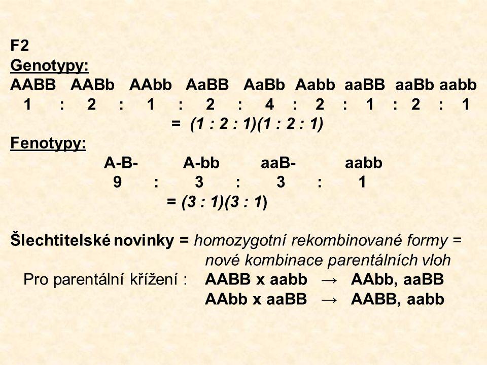F2 Genotypy: AABB AABb AAbb AaBB AaBb Aabb aaBB aaBb aabb.