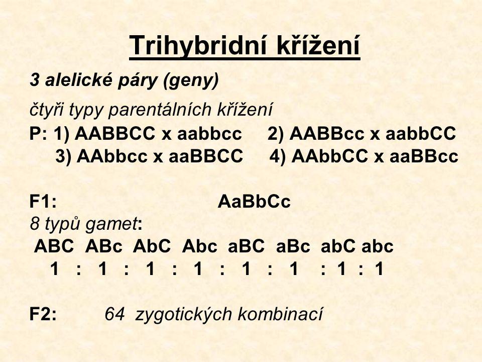 Trihybridní křížení 3 alelické páry (geny)