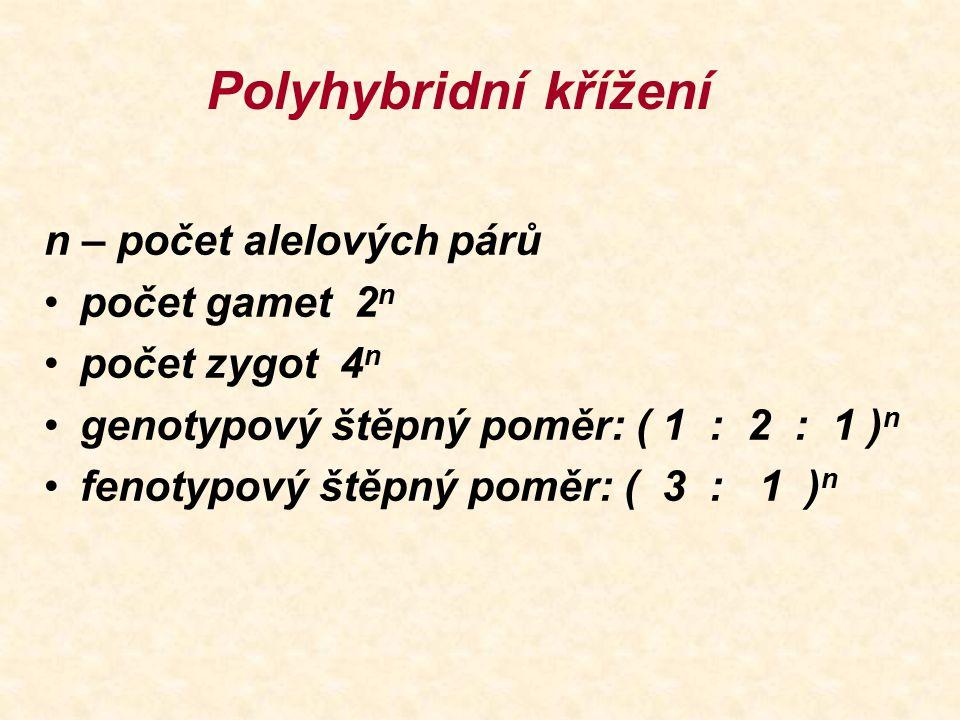 Polyhybridní křížení n – počet alelových párů počet gamet 2n
