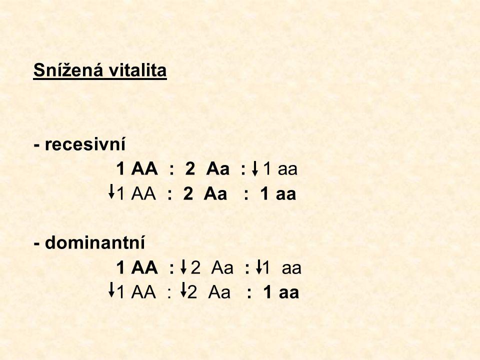 Snížená vitalita - recesivní. 1 AA : 2 Aa : 1 aa. 1 AA : 2 Aa : 1 aa. - dominantní. 1 AA : 2 Aa : 1 aa.