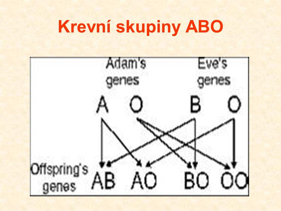 Krevní skupiny ABO 30