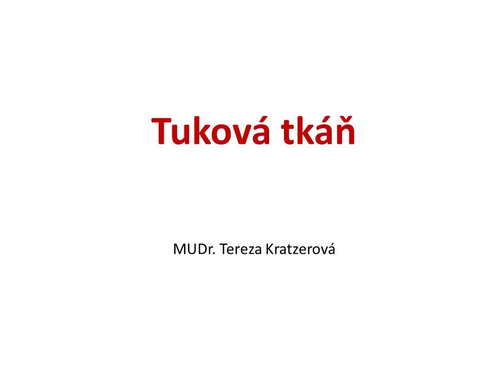 Tuková tkáň MUDr. Tereza Kratzerová
