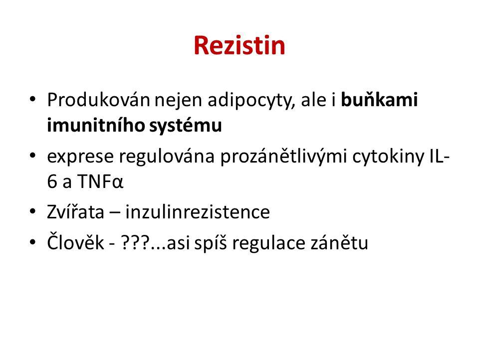 Rezistin Produkován nejen adipocyty, ale i buňkami imunitního systému