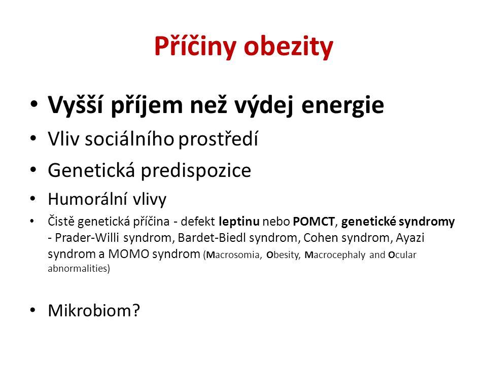 Příčiny obezity Vyšší příjem než výdej energie