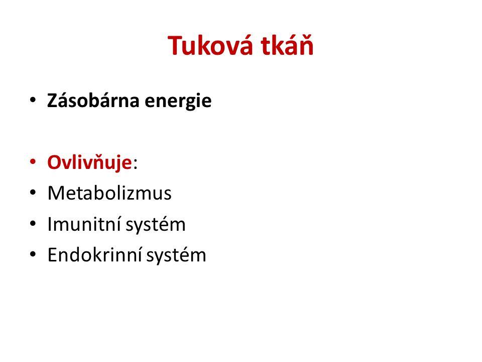 Tuková tkáň Zásobárna energie Ovlivňuje: Metabolizmus Imunitní systém